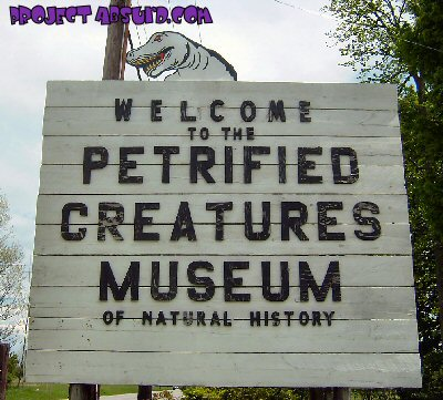 Petrified Creatures